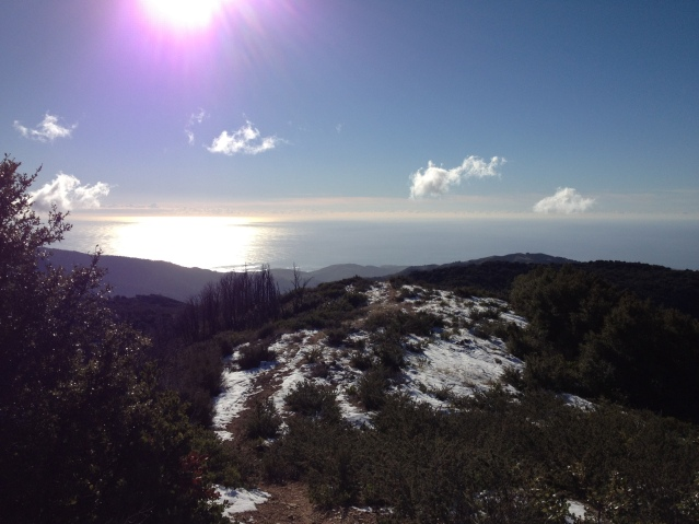 Happy New Year from Big Sur, CA